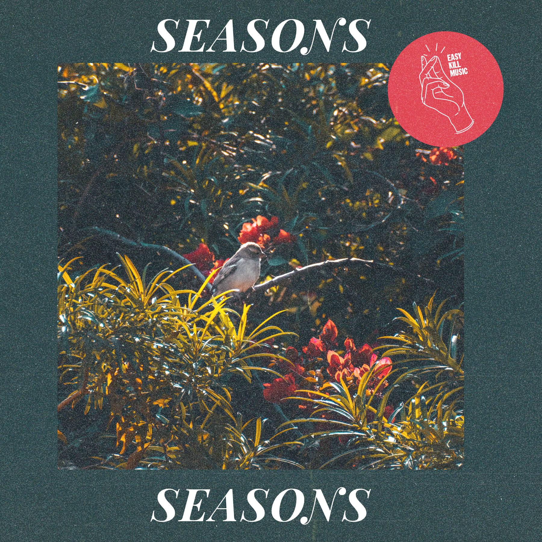 Dream Pop Type Beat Seasons